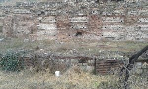 Ruine ale Tomisului