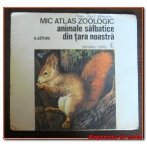 mic-atlas-zoologic-animale-salbatice-din-tara-noastra